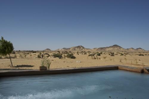 Bassin d'arrivée d'eau dans l'oasis de Baharyia, Egypte (2009)